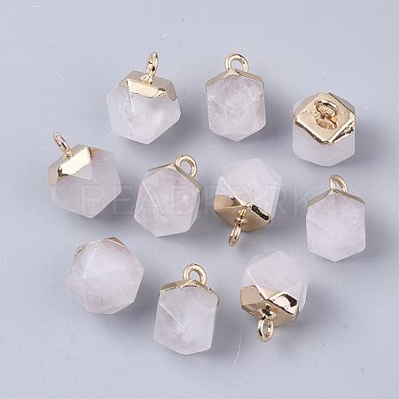Natural Quartz Crystal CharmsX-G-S359-015F-1