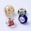 Glass & Resin European BeadsGPDL-XCP0001-01S-2
